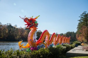 chinese_lantern_0004-728x484