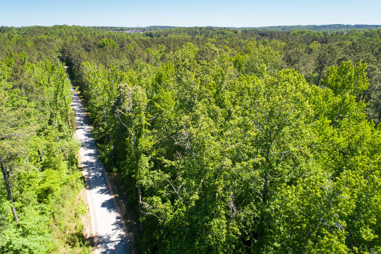 Gorgeous 4 Acre Tract Of Land For Sale Just South Of Chapel Hill Nc